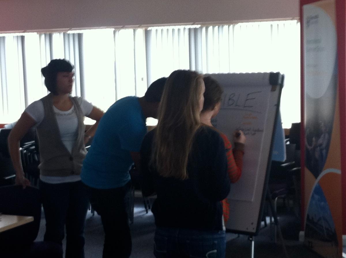 Teaching: Newcastle University International Summer School (NUISS)2011