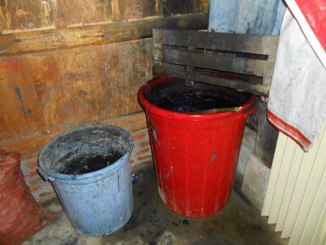 Indigo plants soaking with urine & calcium to make the dye
